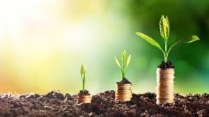 Bild - Nachhaltigkeitsfonds